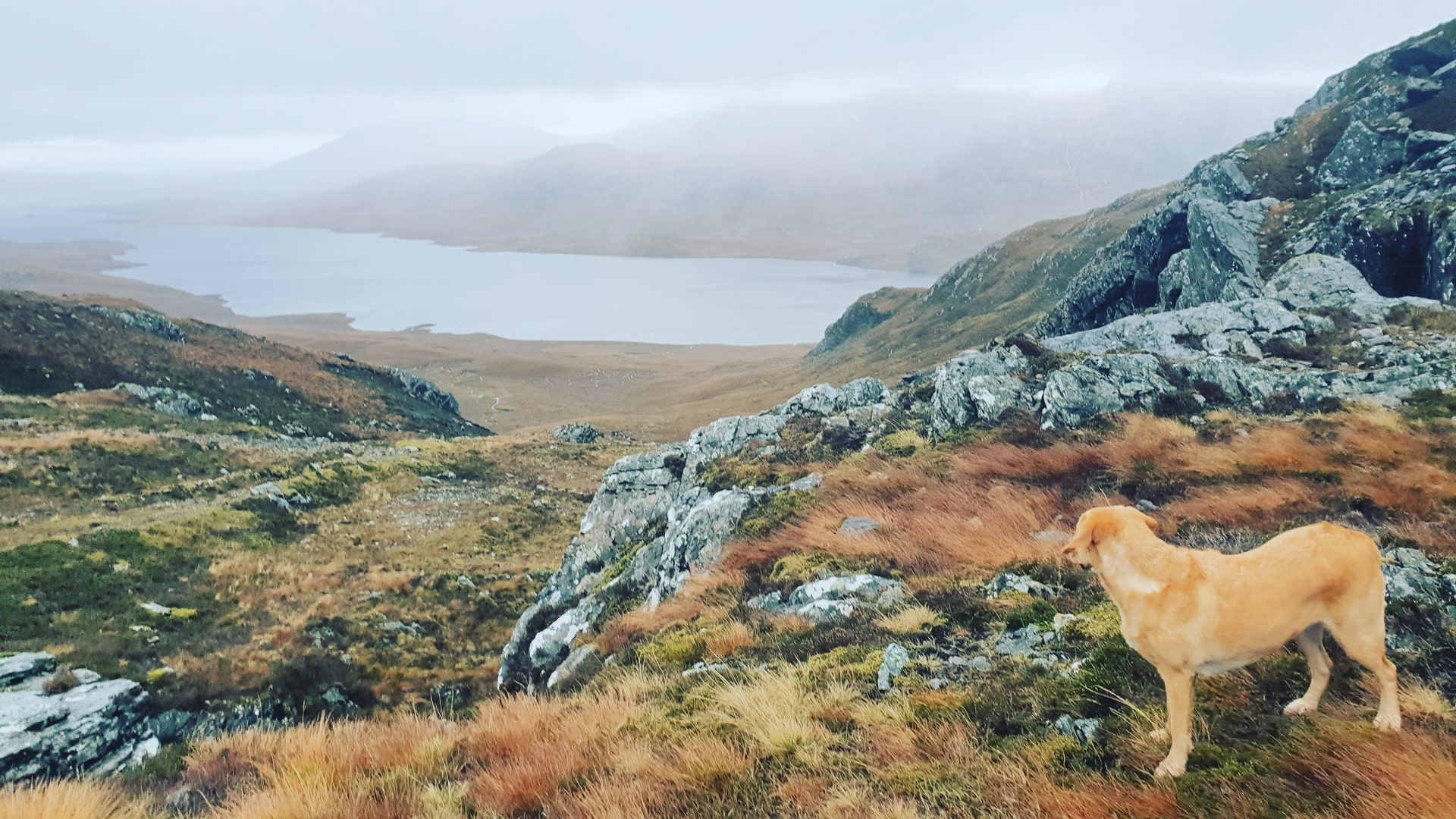 Experiences in Scotland Highlands