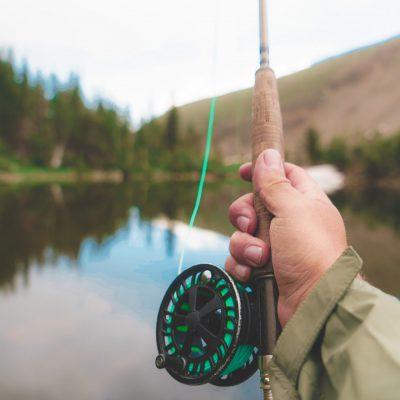 Fishing trips in the UK