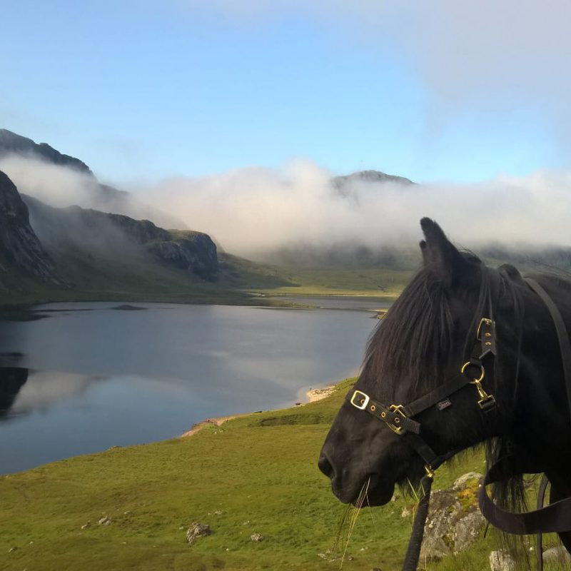 Horse-riding and pony-trekking in Scotland
