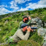 Experience camera stalking the in Highlands